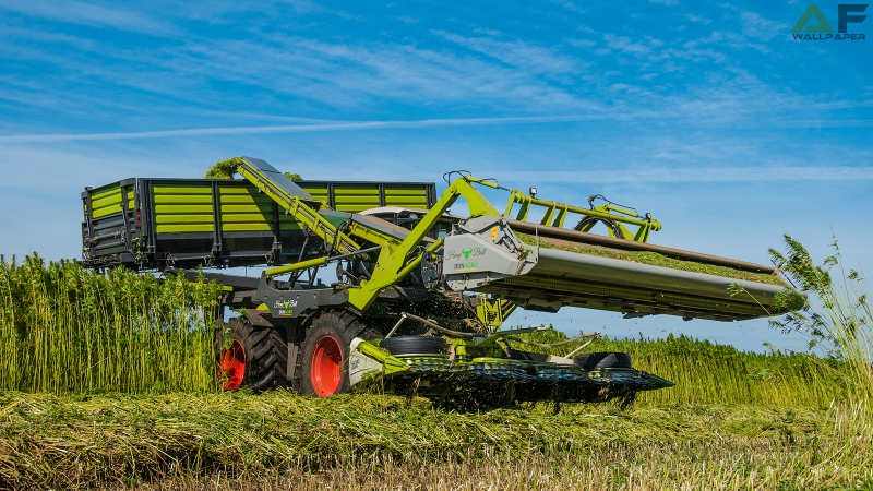 Wallpaper Claas Xerion 4000 Hemp Bull 2